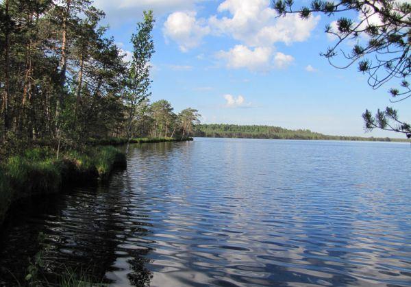 Озеро Вервижское, Смоленское Поозерье