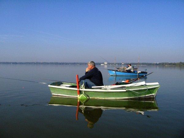 Рыбалка на озере Балатон.jpeg