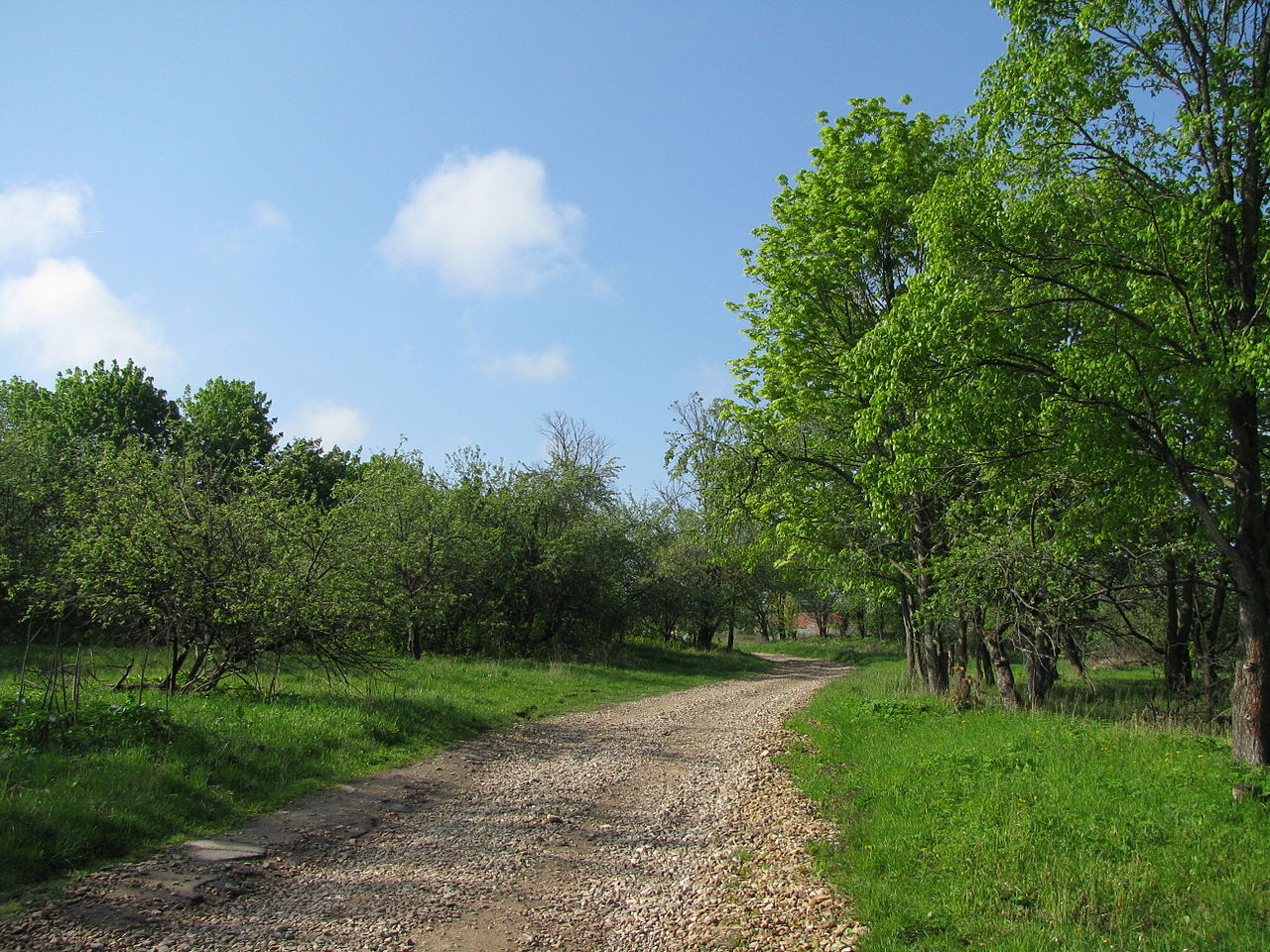 Подмоклово, сад усадьбы Долгоруковых
