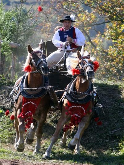 Костюмированный наездник, Словакия