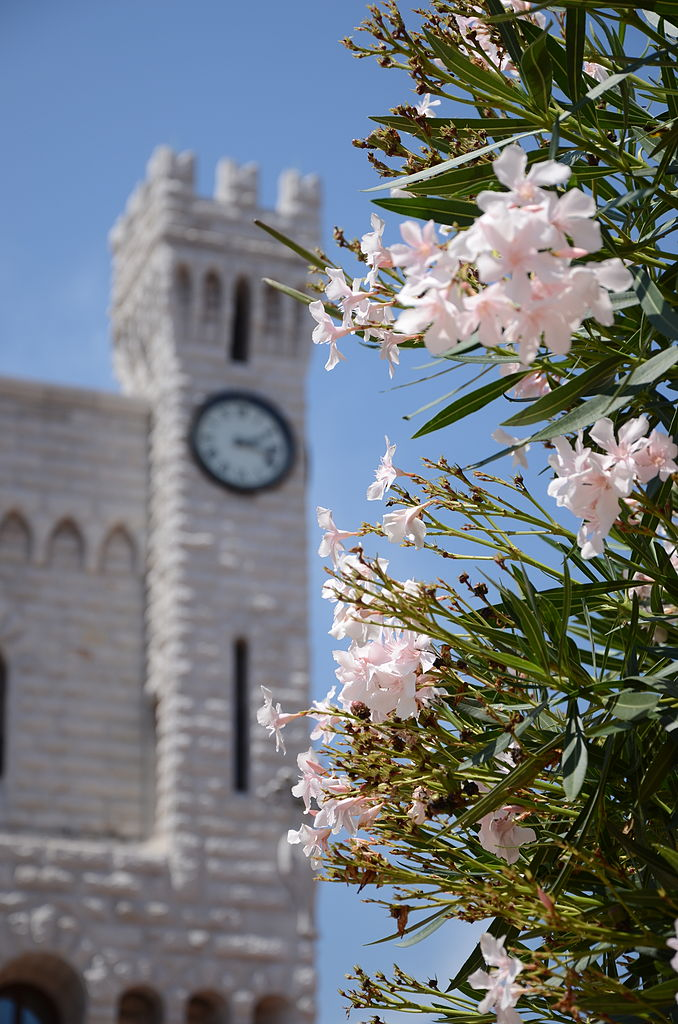 Княжеский дворец в Монако, башня с часами
