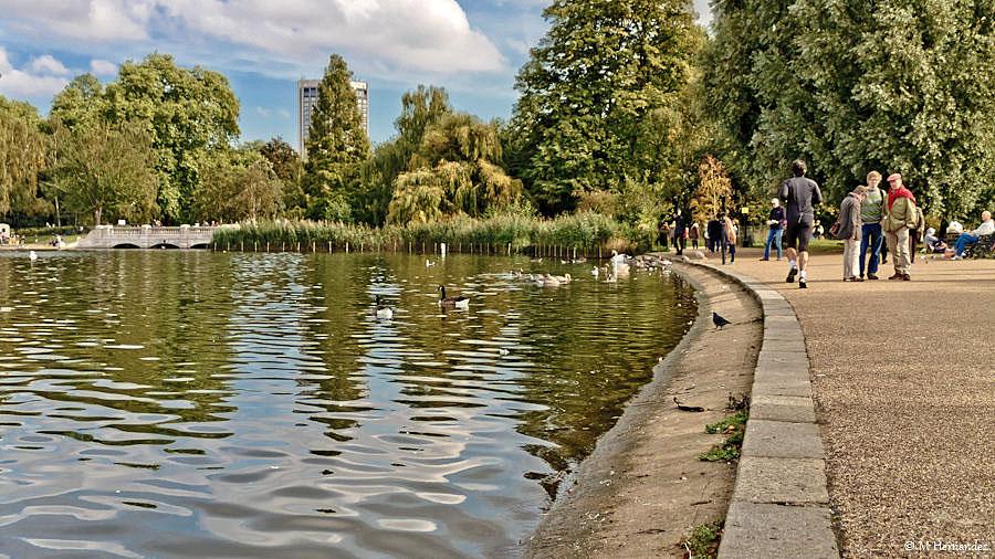 Пруд Гайд-парка, Лондон