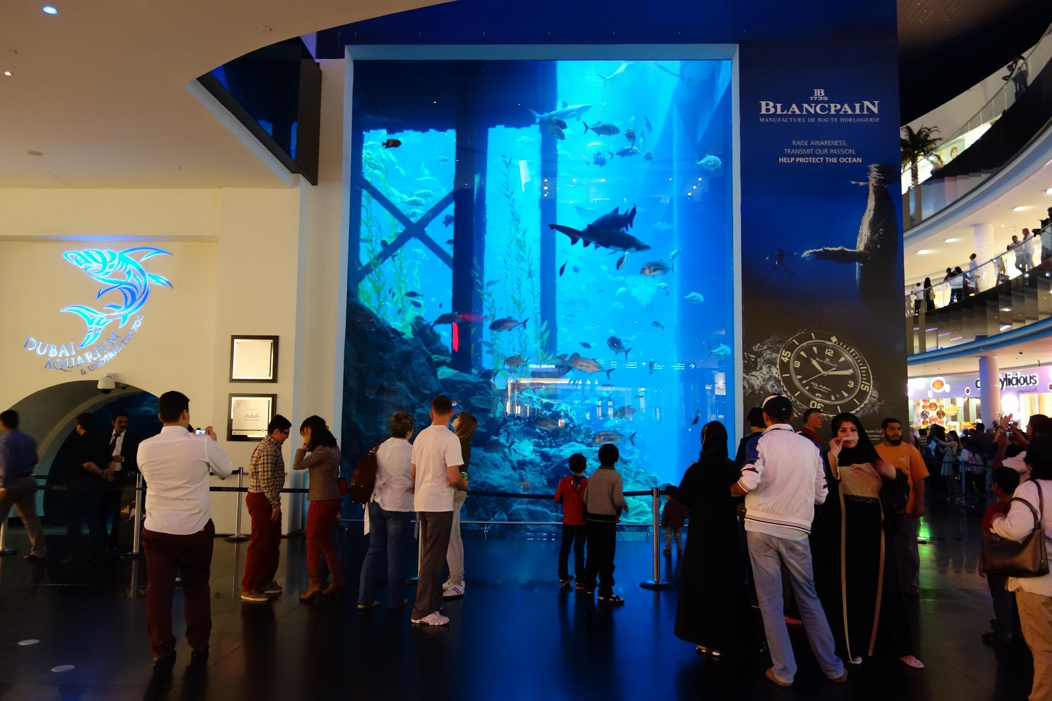 Аквариум в торгово-развлекательном центре Дубай Молл
