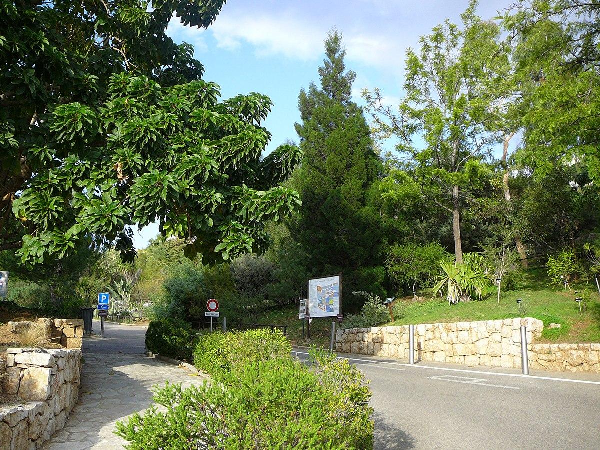 Ботанический сад Ниццы