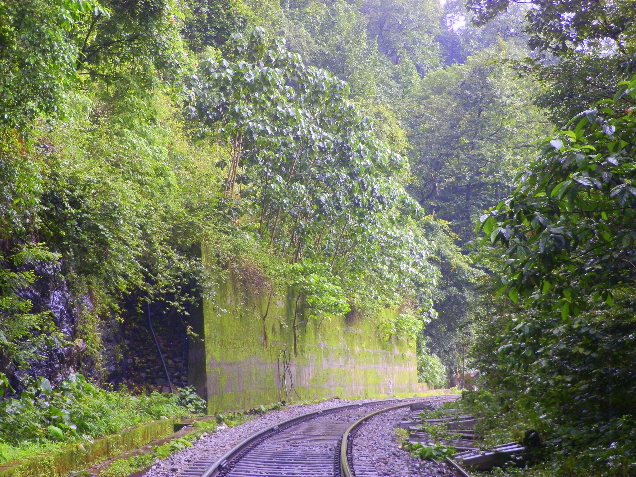 Железная дорога к водопаду Дудхсагар, Индия