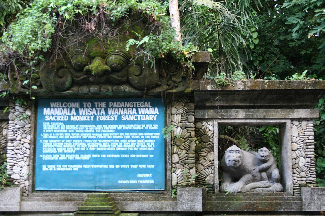 Приветственный знак в Лесу обезьян Убуда, Бали