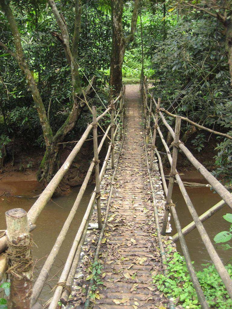 Мост, Плантации специй Сакахари, Гоа