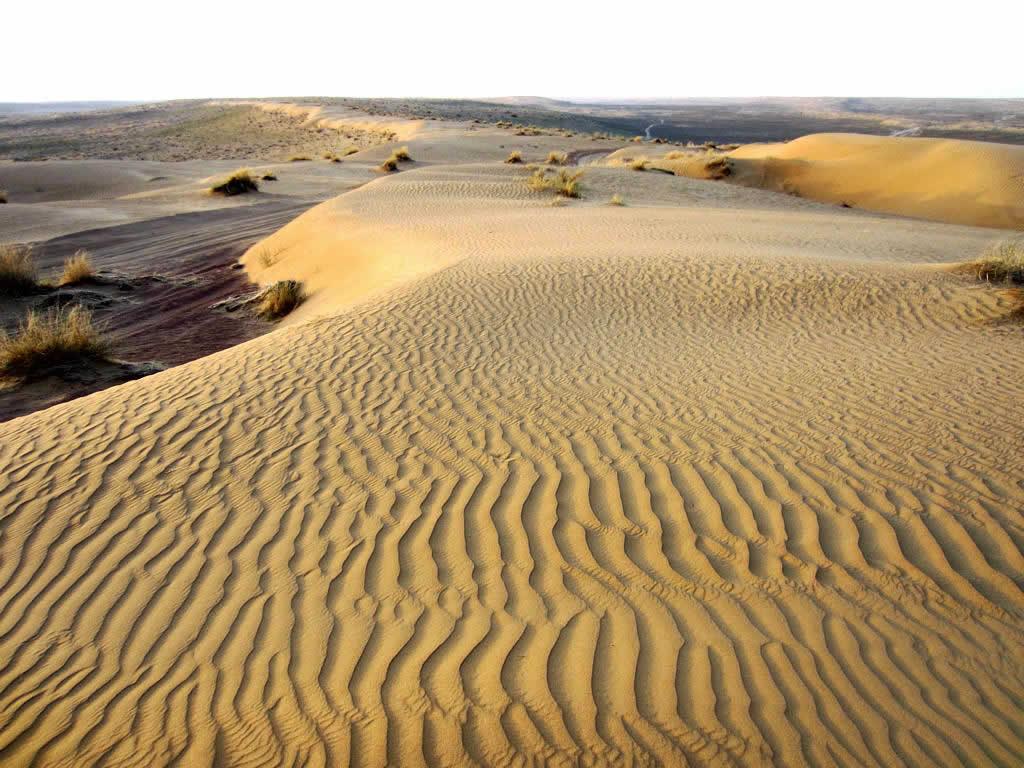 признался, песчаные гряды картинка есть паблик про