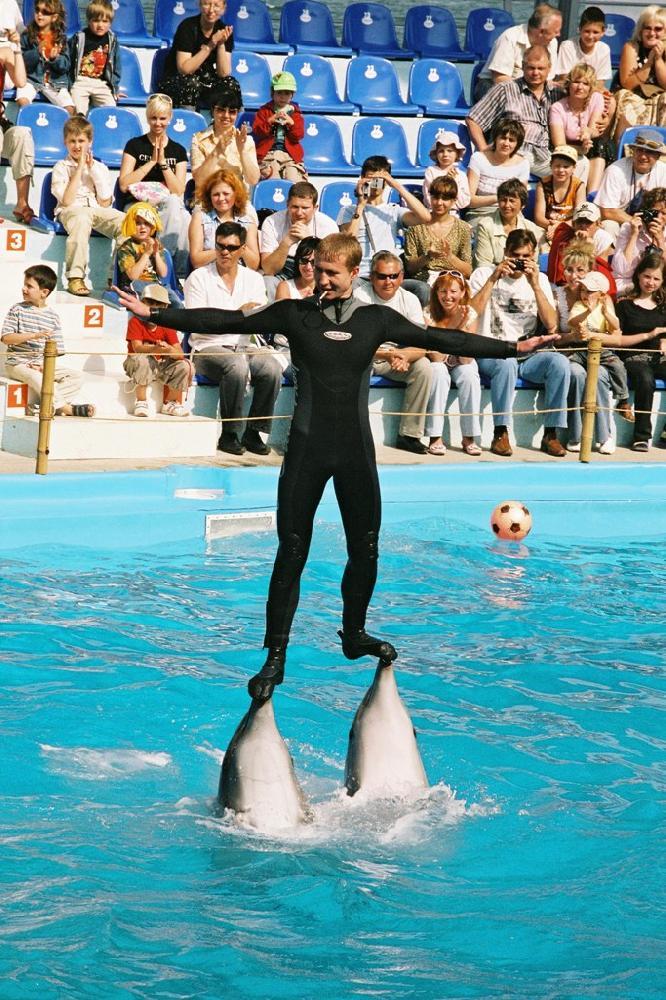 Выступление в дельфинари в Одессе.jpg