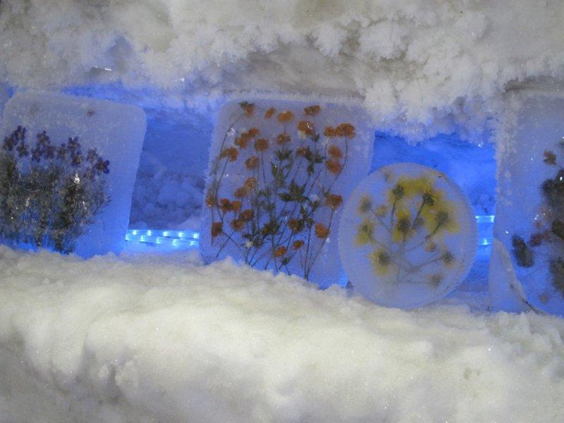 Застывшие цветы, Музей вечной мерзлоты в Игарке, Красноярский край