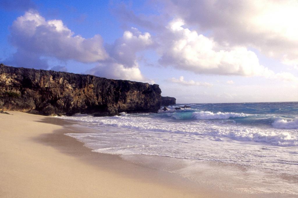 фото пляжей барбадоса хотят быть ближе