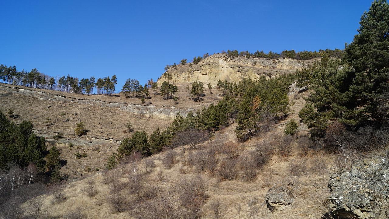 Вид на Кольцо-гору