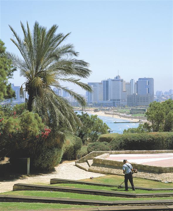 Поддержание ровности газона в Тель-Авиве
