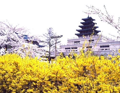 Национальный фольклорный музей в Южной Корее.jpg