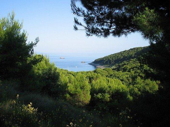 Природа острова Лопуд,Хорватия