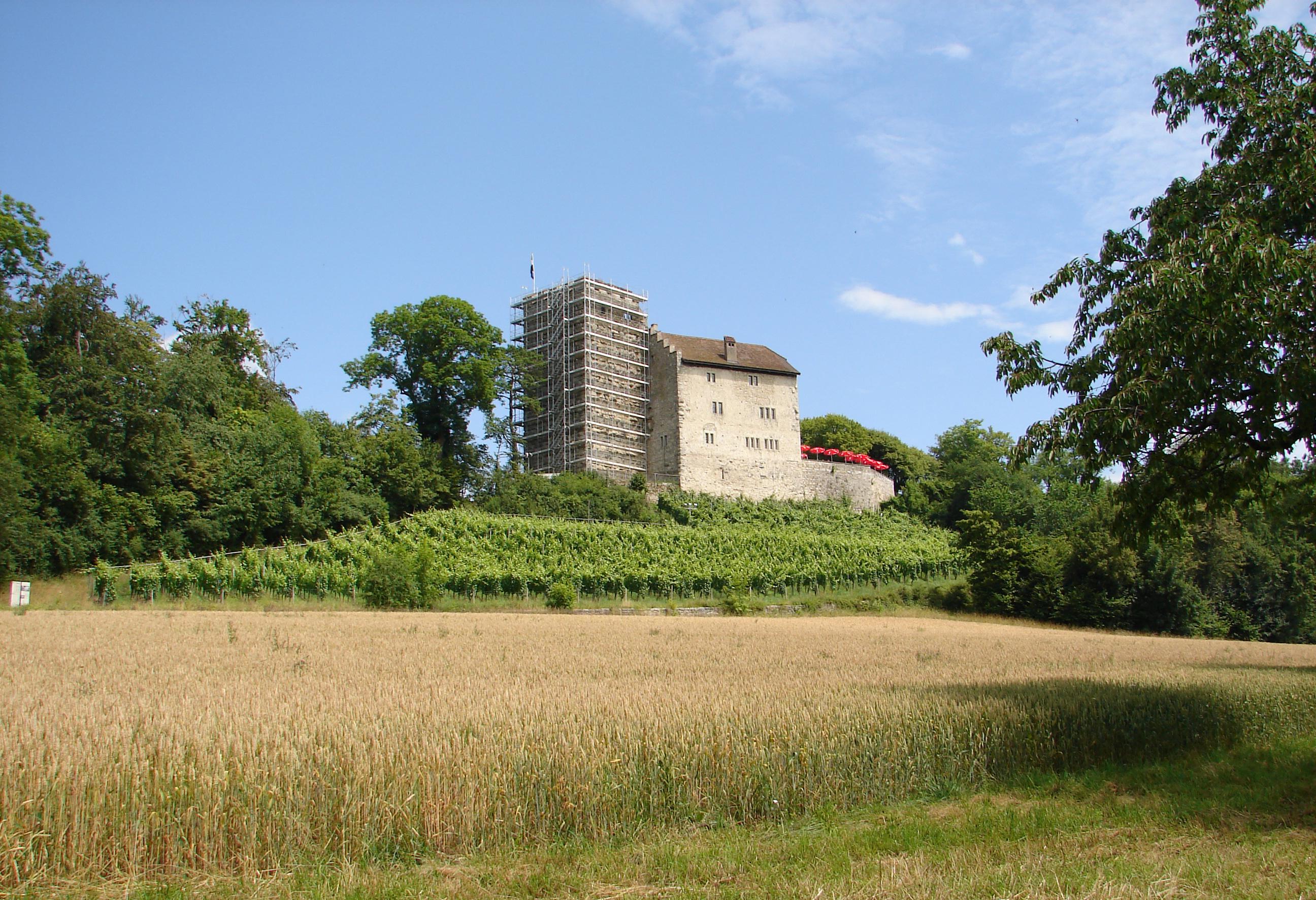 Замок Габсбург, Швейцария