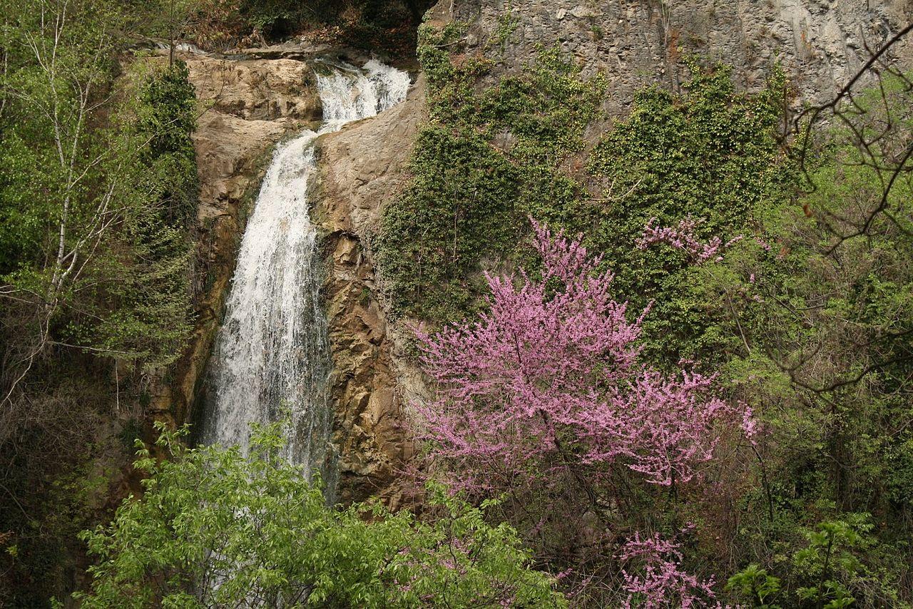 Тбилисский ботанический сад, водопад