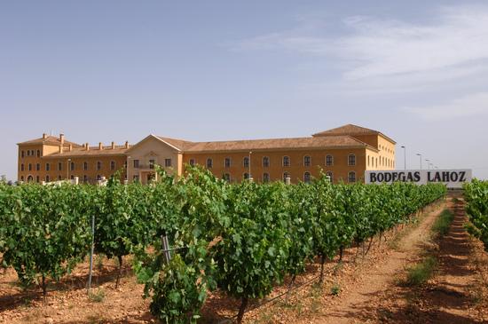 Виноградники у винного завода в Кастилии — Ла-Манча.jpg