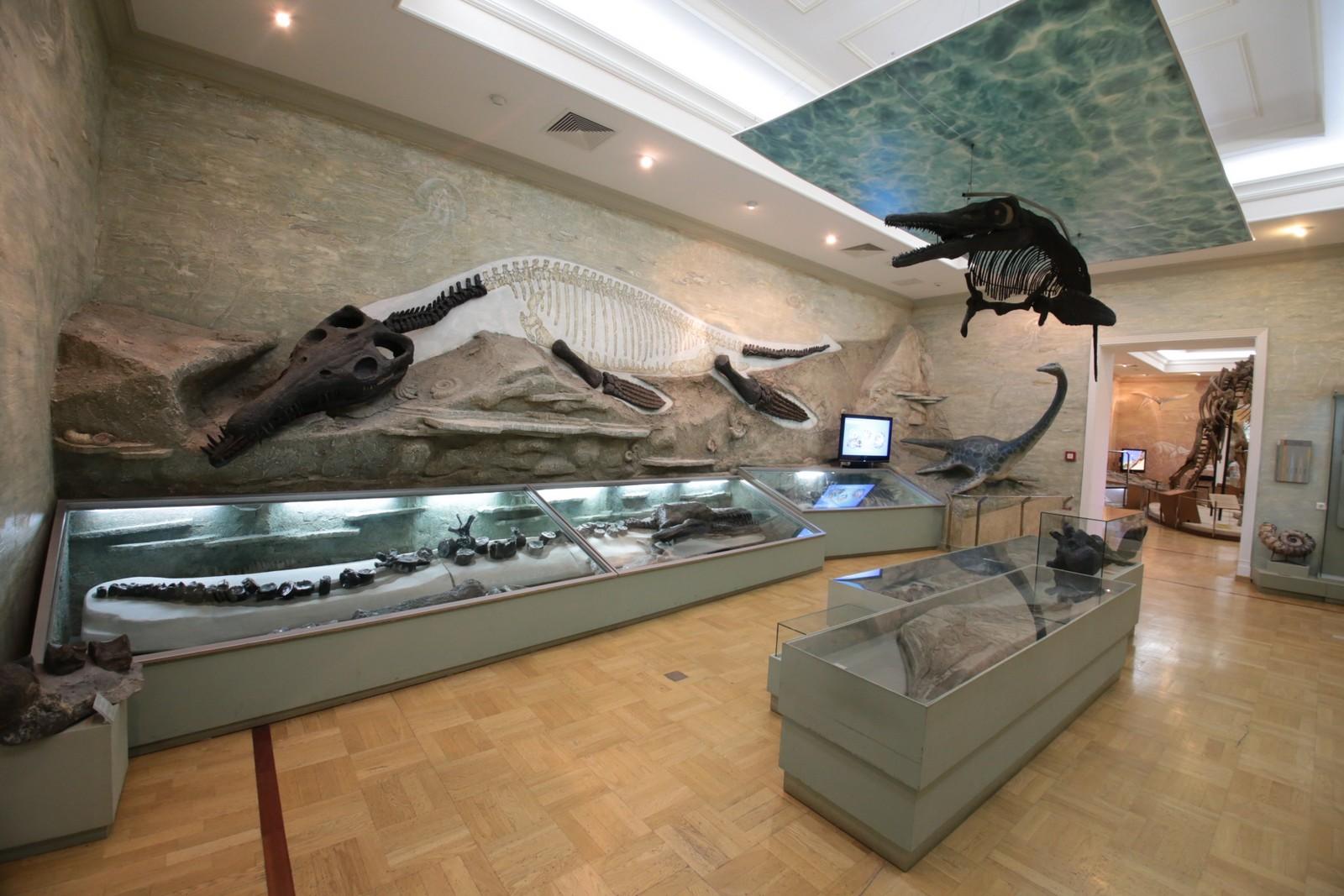 Музей естественной истории Татарстана, зал «Морские рептилии»