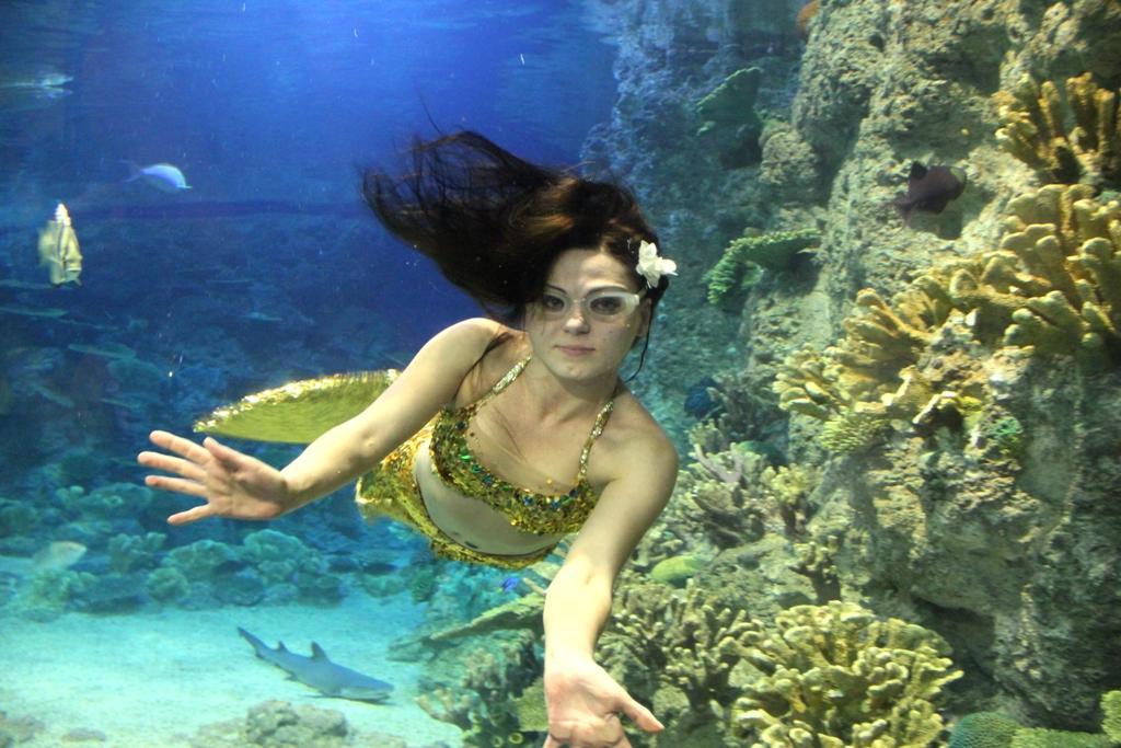 Океанариум в Сочи, русалка
