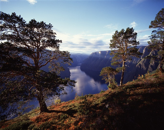 Осень в Aurland, Норвегия.jpg