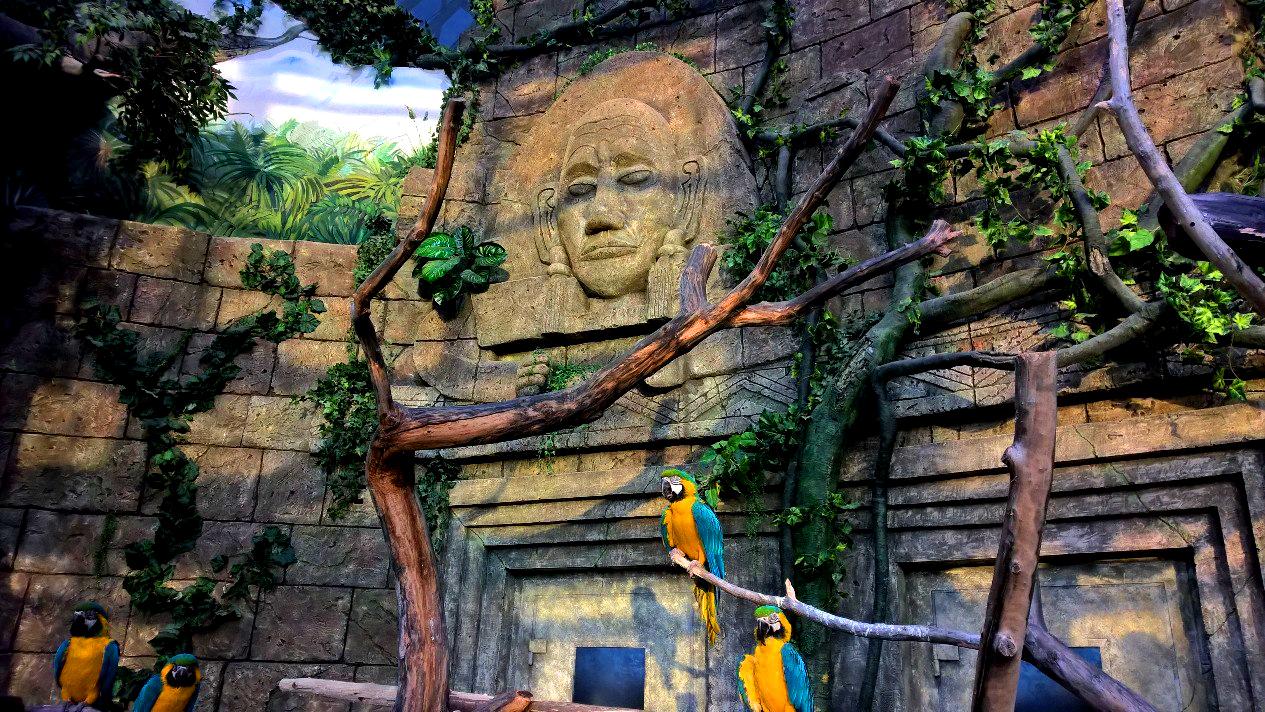 Зоопарк в Минске, павильон фауны Южной Америки