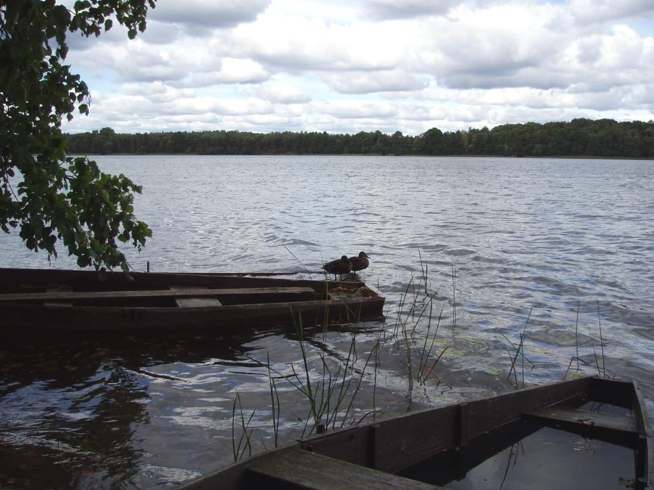 Смоленское поозерье, озеро Баклановское