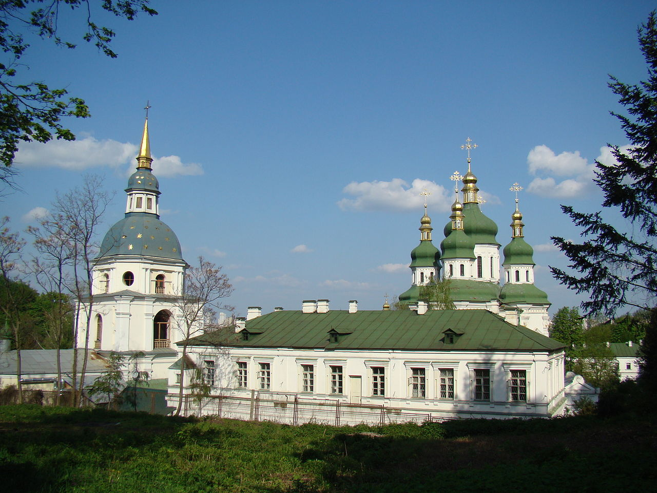 Выдубицкий монастырь, панорама