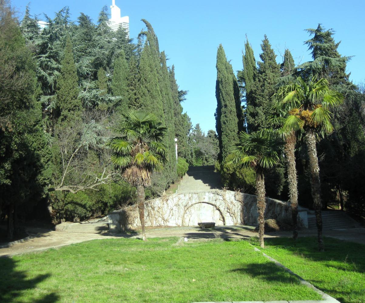 Вот в таком парке находится отель. Почти батанический сад!