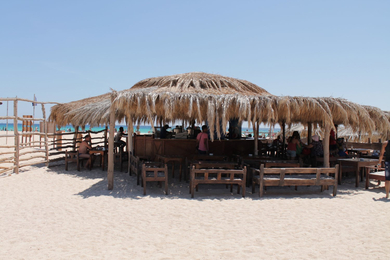 фото sonesta beach resort casino 5