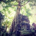 таинственный Ангкор-ватт