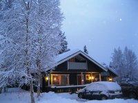 ... посе снегопада, красота!