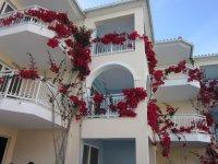 красивые цветочки на фасаде