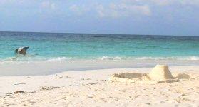 Пляж и замки на песке