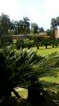 Ботанический сад в Санто-Доминго