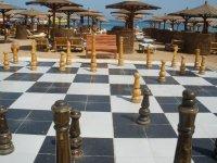 Шахматы (можно играть)