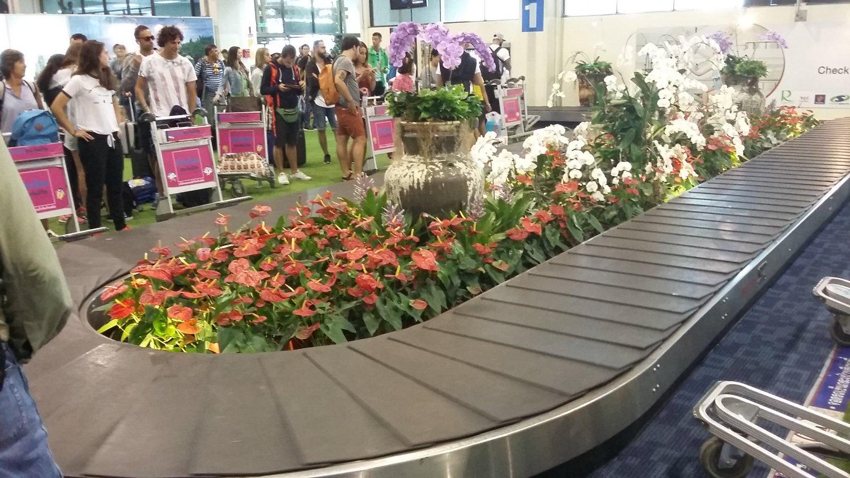 Оформление багажной ленты в аэропорту Чианг Рая