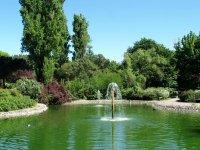 В парке Пирагетто