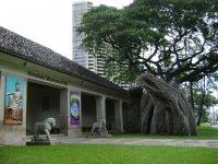 музей искусства