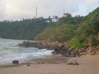 На пляже Джангл Бич (пляж джунглей)
