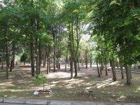 Парк возле отеля