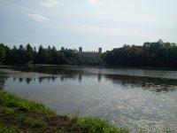 Вид на озеро и Гатчинский дворец