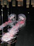мерцающая медуза