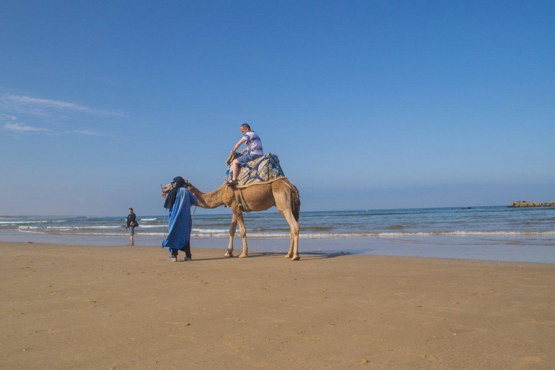 существует единого отдых в марокко отзывы туристов и фото музики можна дізнатися