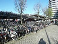 Огромная велопарковка перед входом в отель