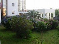 флора отеля