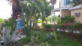 Отель на берегу Карибского моря