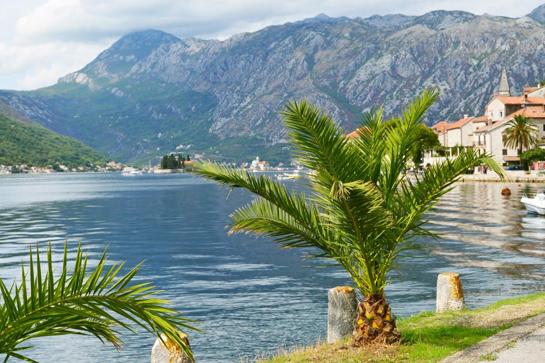отдых в черногории отзывы с фото шутку попросил