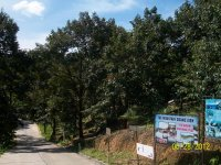 в этом парке много деревьев, среди них вам покажут и знаменитую гевею