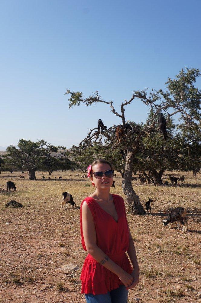 детском возрасте: отзывы об отдыхе в марокко Вовянко